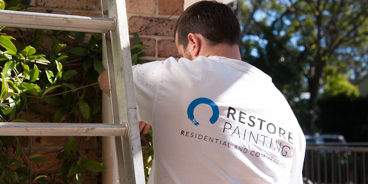 Contact Restore Painting